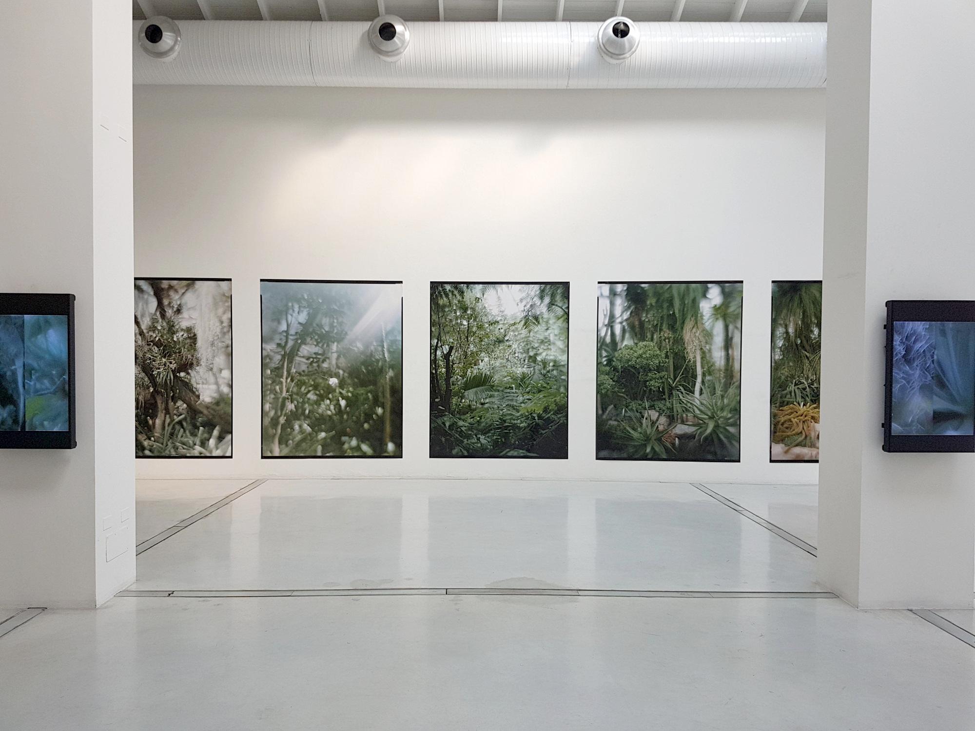 Vincenzo Castella – Trame senza fissa dimora, 2018 - installation view