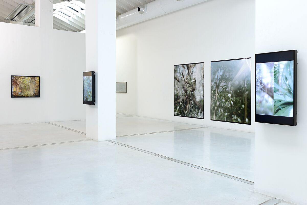 Vincenzo Castella – Trame senza fissa dimora, 2018 - installation view | photo Michele Alberto Sereni | courtesy Studio la Città – Verona